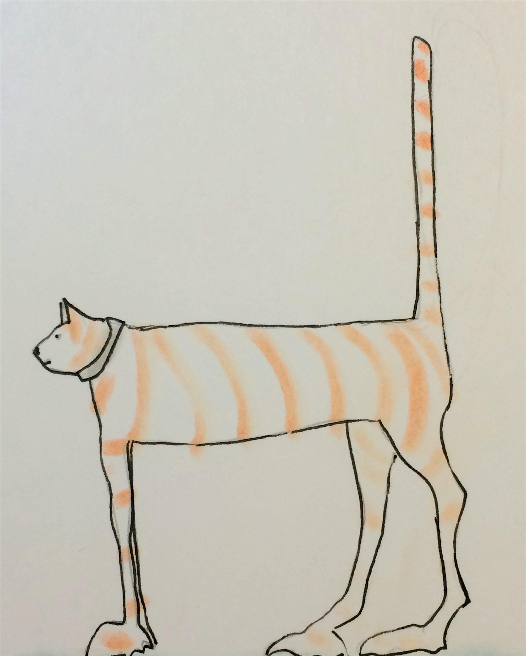 Children's Cat